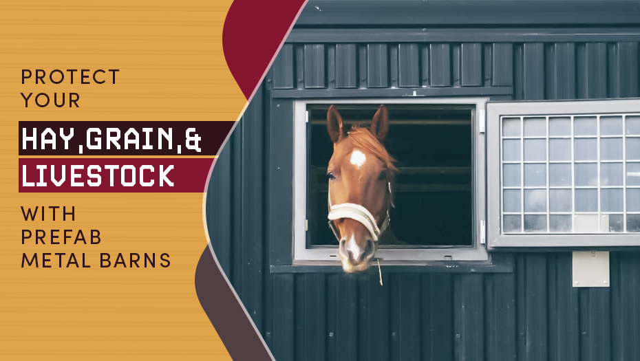 Protect Your Hay, Grain, and Livestock with Prefab Metal Barns