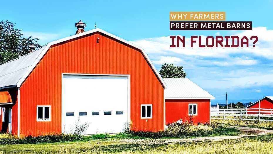 Why Farmers Prefer Metal Barns in Florida?